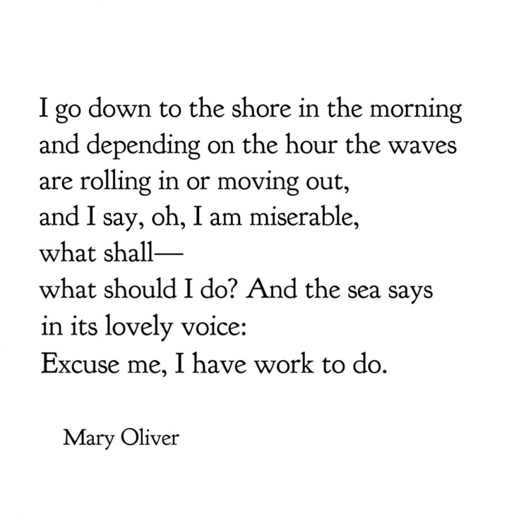 Amazing Mary Oliver The Gardener Image037