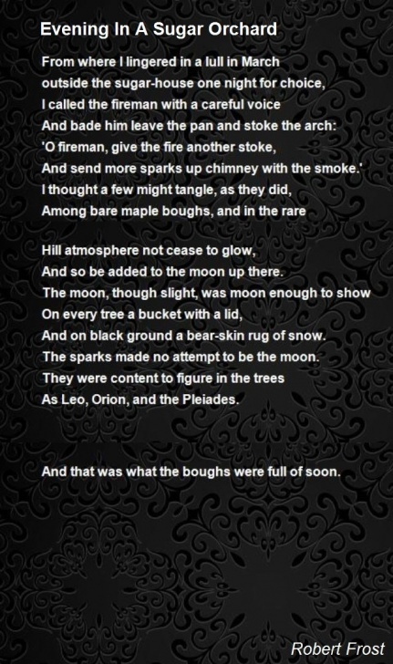 Amazing Poem Called Trees Picture936