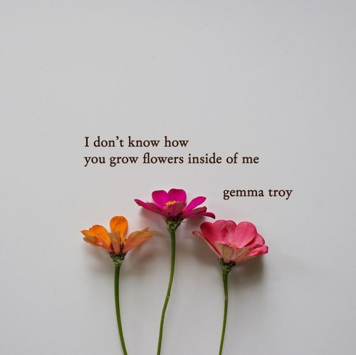 Amazing Poems About Flowers Blooming Picture935