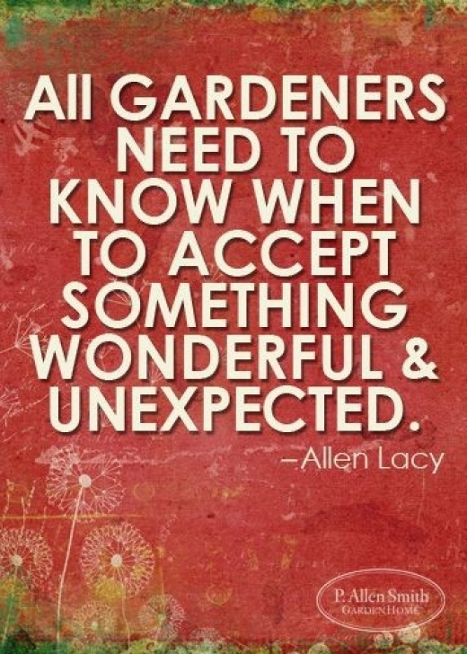 Amazing Poems About Gardens And Life Pic907
