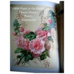 Amazing Poems About Herbs In The Garden Pic522