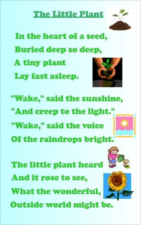 Amazing Poems About Plants And Flowers Pics107