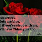 Amazing Roses Are Poems Pics845