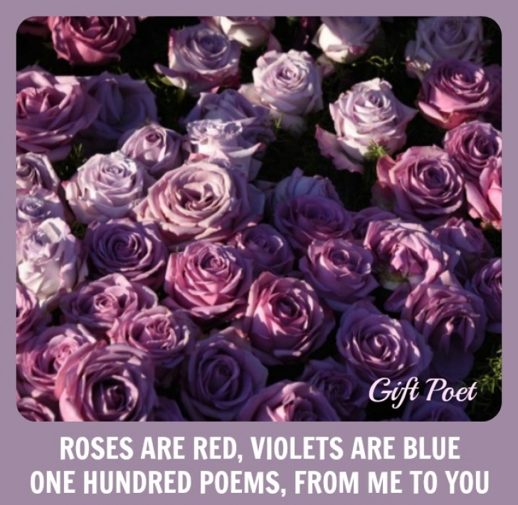 Amazing Roses Are Red I Love You Poems Pics250
