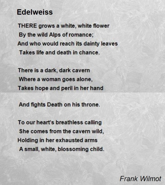 Amazing She Is A Flower Poem Image185