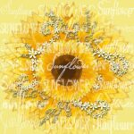Amazing Sunflower Poem For Her Picture265