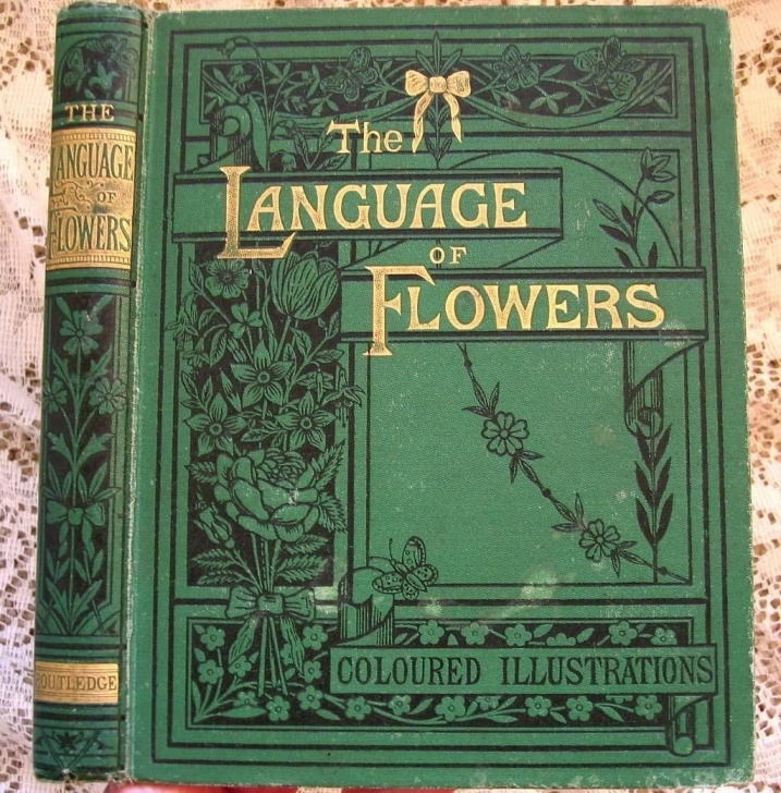 Amazing The Language And Poetry Of Flowers Picture211