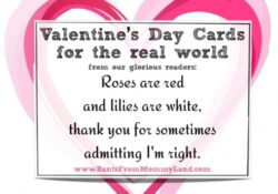 Amazing Valentine Day Poem Roses Are Red Pic237
