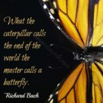 Awesome Caterpillar Garden Poem Pic863