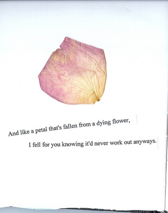 Awesome Dying Rose Poem Pic494