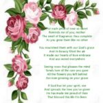 Awesome May Flowers Poem Photo736