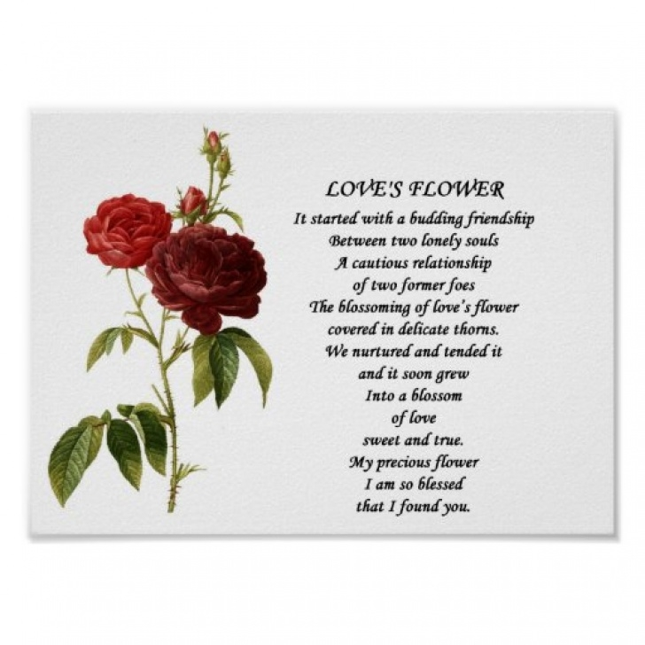 Awesome Poem About Love And Flowers Pics627