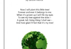 Awesome Poem About Plants Growing Photo096