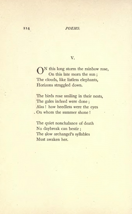 Awesome Poem By Emily Dickinson About A Bird In Her Garden Photo347
