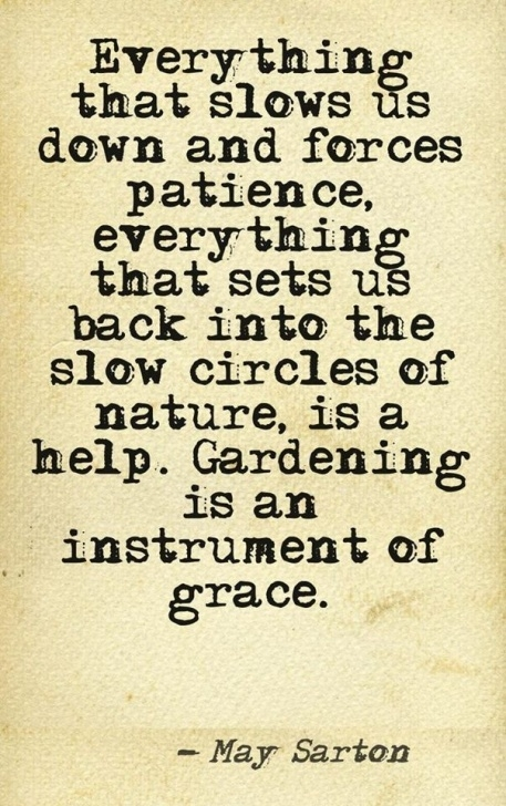 Awesome Poems About Gardens And Friendship Picture316