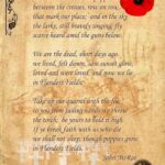 Awesome Poems About Poppies And Love Picture830
