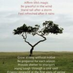 Awesome Poems About Trees And Strength Image304