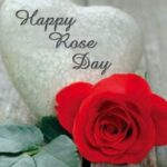 Awesome Rose Day Poem For Girlfriend Picture511