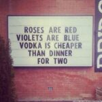 Awesome Roses Are Red Violets Are Violet Photo938