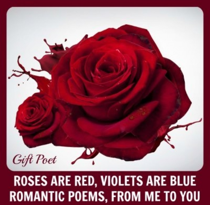 Awesome Roses Are Red Violets Are Violet Poem Pic459