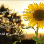 Awesome Short Poem On Sunflower Photo643