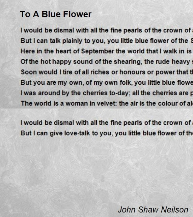 Awesome The Most Beautiful Flower Poem Image509