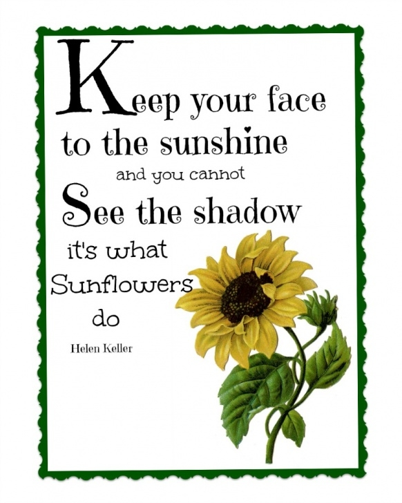 Awesome The Sun And Her Flowers Sunflower Poem Pics865