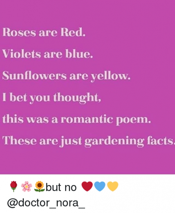 Awesome Violets Are Purple Poem Picture395