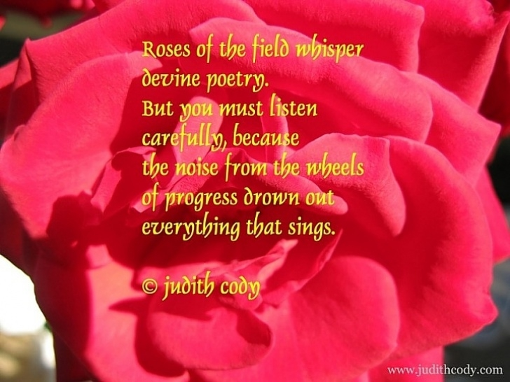 Best Flowers Are Red Poem Pic206