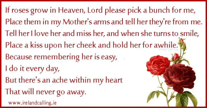 Best Funeral Poems About Flowers Picture879