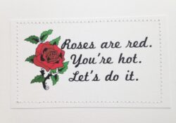 Best Funny Love Poems Roses Are Red Picture456