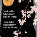 Best Haiku Poems About Spring Flowers Pic158