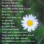 Best Inspirational Poems About Flowers Pic564