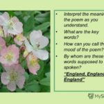 Best Poem About Flowers In English Pic223