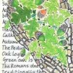 Best Poems About Acorns And Oak Trees Picture172