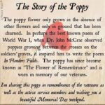 Best Poems About Poppies And Love Picture764
