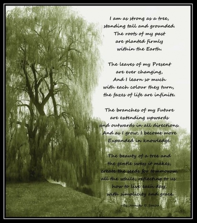 Best Poems About Trees Picture088