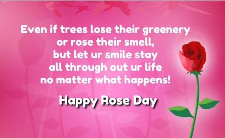 Best Roses Are Red Love Poem Photo976