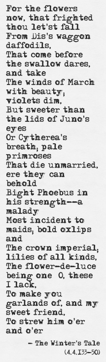 Best Short Poems About Daffodils Pic294