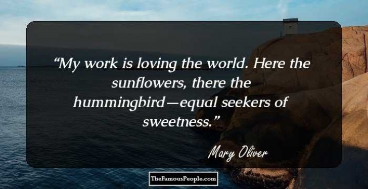 Best The Sunflowers Mary Oliver Photo668