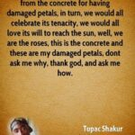 Best Tupac Poem Flower Concrete Photo736