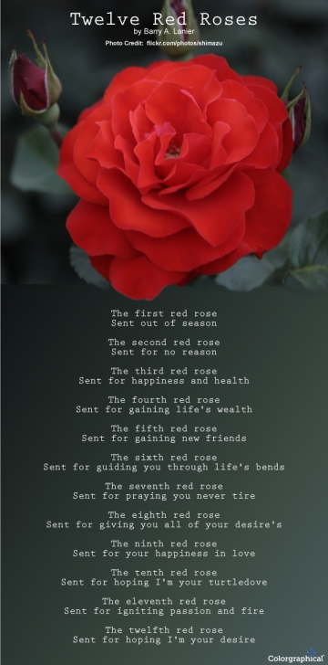 Creative A Dead Rose Poem Pic848