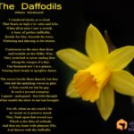 Creative Dandelion Poem Wordsworth Image624