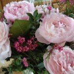Creative Mary Oliver Peonies Picture650