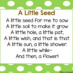 Creative One Little Flower Poem Photo925