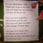 Creative Poem About Plants Growing Picture698
