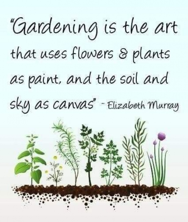Creative Poems About Herbs In The Garden Image009