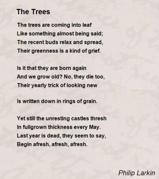 Creative Poems About Leaves And Trees Image282