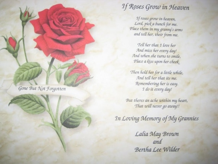 Creative Rose Flower Poem In English Photo993