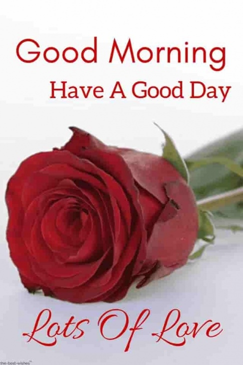 Creative Roses Are Red Good Morning Photo683
